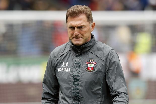 Southampton FC - Saints | Daily Echo