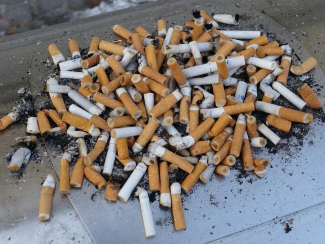 Discared cigarette ends