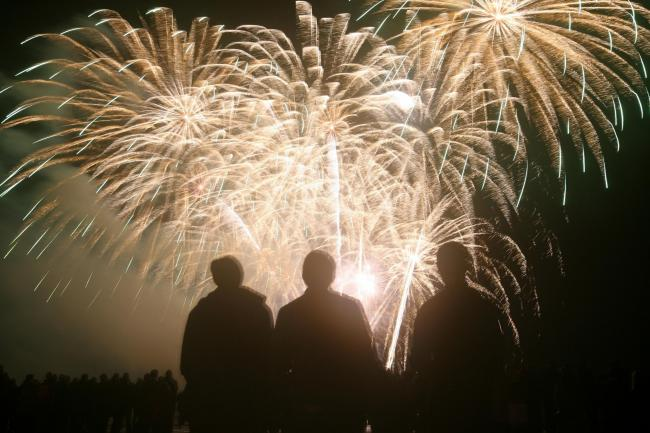 The annual Mayflower Park firework display. Photo: Ian Hinchliffe