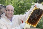 TASTE OF HONEY: Bee keeper Tony Mabey.