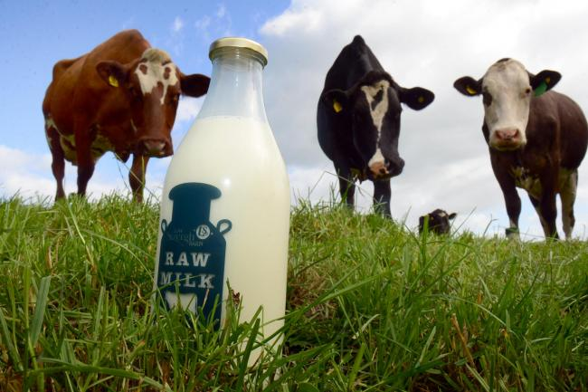 Sarah's Dairy has stopped selling raw milk, despite receiving the all-clear from the Food Standards Agency.
