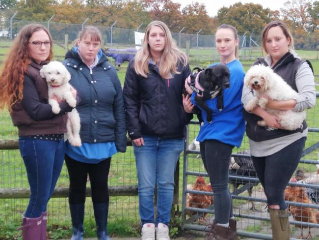 Helen Shaw (left) with staff and volunteers at St Francis Animal Welfare
