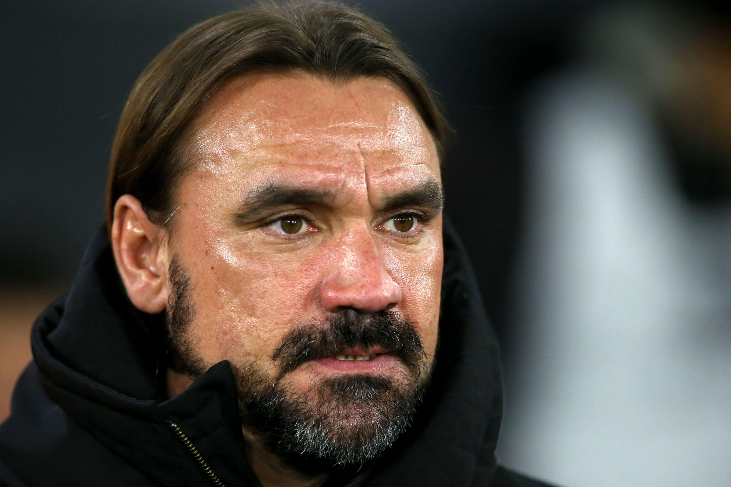 Norwich City manager Daniel Farke: Southampton bullied us