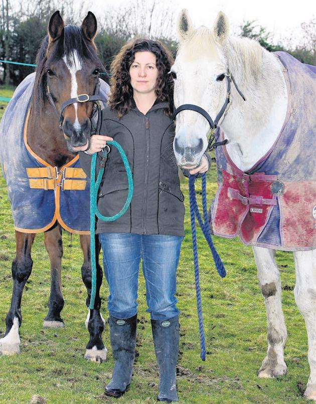 Ali Everett and her horses
