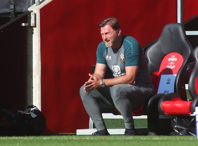Ralph Hasenhuttl watches his side lose to Arsenal (Pic: Stuart Martin)