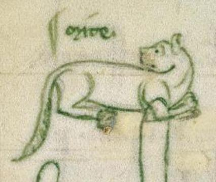 Mite is drawn in the Cistercian Abbey's account book and is believed to be Britain's earliest named pet.