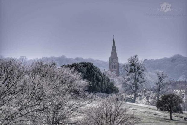 Daily Echo: Lyndhurst. Photo by: Daily Echo Camera Club member Sarah Penfold