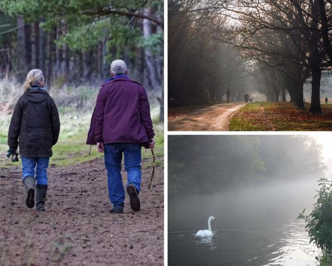(Images - stock, Southampton Common by Steve Miller and Misty Riverside Park by Becky Cardy Tilley).