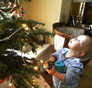 Andrew McCall gazes in wonder at the family tree on Christmas Eve – just a few hours before he died from swine flu.