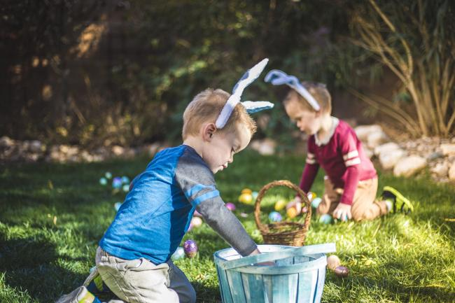A stock photo of an Easter egg hunt. Identical twin brothers can be seen collecting Easter eggs in an easter basket..