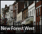 Daily Echo: New Forest West