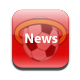 Southampton FC news from the Daily Echo