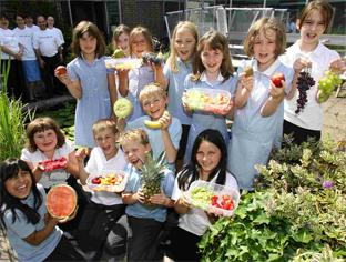 HEALTHY EATING: Children at Bitterne CE Junior School learn about fresh fruit with Bupa volunteers, back left, as  part of the Activ-eat initiative. 	Echo picture by Chris Moorhouse. Order no: 10674671
