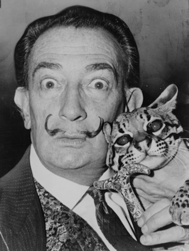 Daily Echo: Dali: eccentric or just mad?