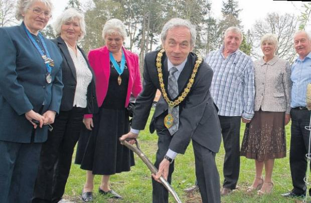 Cllr Penwarden plants a willow at the Ashurst park.