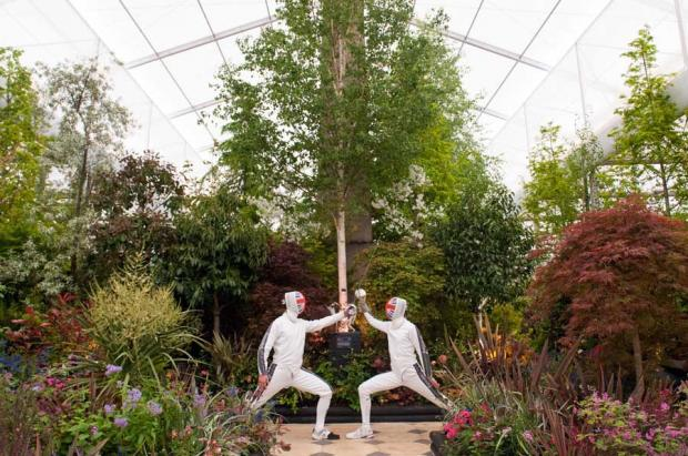Blooming marvellous results for Hampshire at Chelsea Flower show