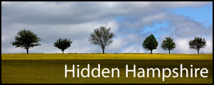 Daily Echo: Hidden Hampshire