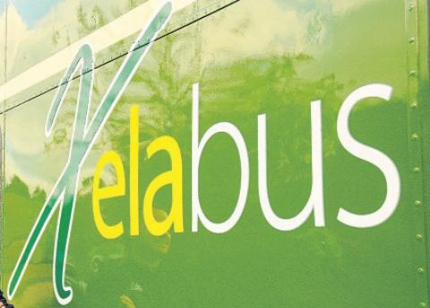 Daily Echo: Bus merger collapses