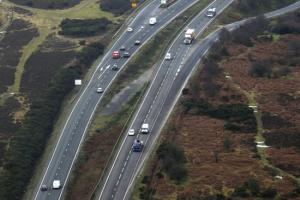 Highway Agency to carry out fencing work on busy New Forest road after spate of accidents