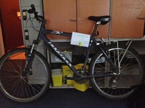 Daily Echo: Is this your stolen bike?