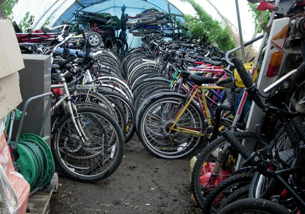 THe bikes found in the polytunnel near Lymington