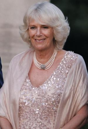 Camilla to unveil portrait during visit to Hampshire