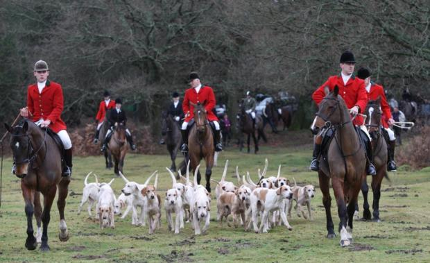 The New Forest Hounds gathered outside the Balmer Lawn Hotel in Brockenhurst