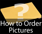 Daily Echo: How to Order Pictures Graphic