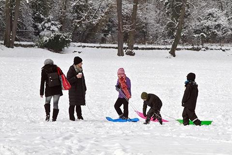 Families playing in the snow