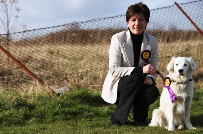 Diane James - UKIP