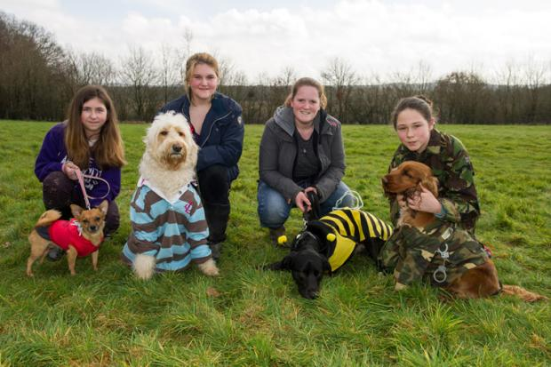 Bark in the Park brings in £1,200 for hospice