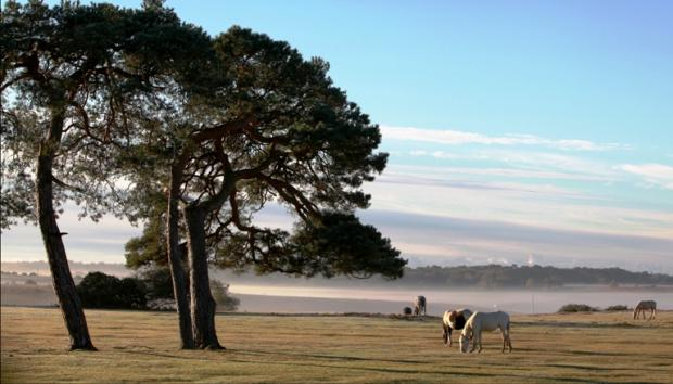 Where in Hampshire are among the best places to live in the country?
