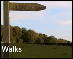 Walks in Hampshire