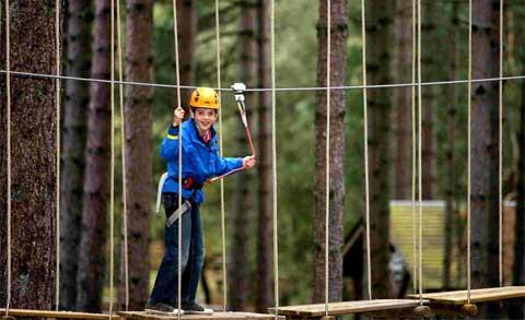 Daily Echo: Ten-year-old Joe Findley on the Go Ape Explorer course at Moors Valley Country Park.