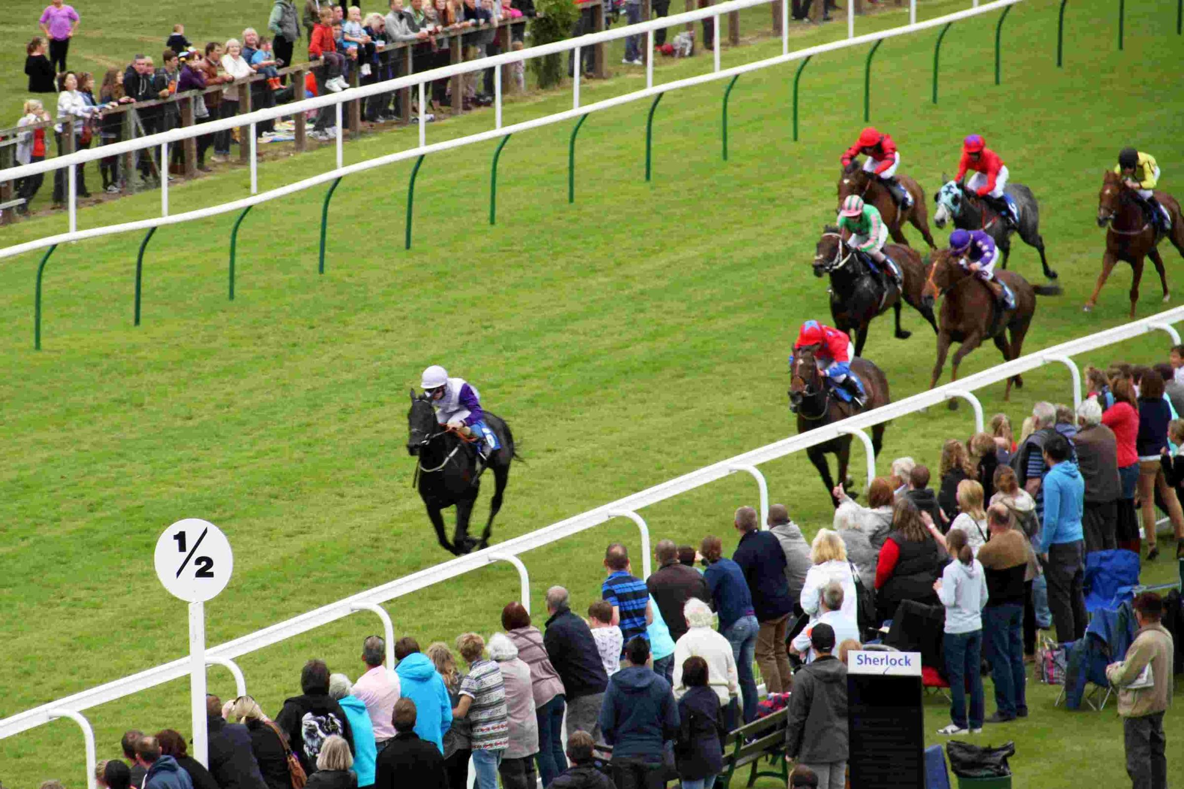 Horse racing: Sunny future at Salisbury