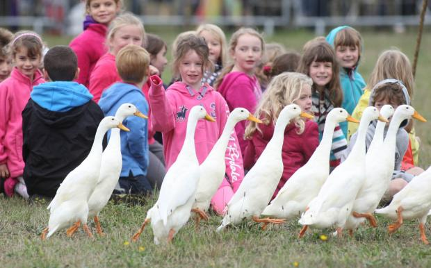 The Quack Pack entertain young visitors to the show
