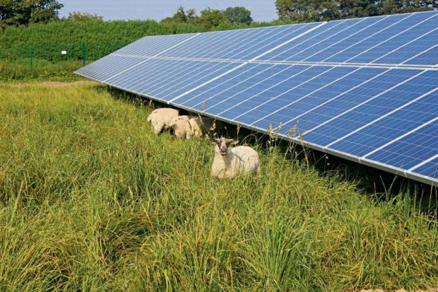 Giant solar farm planned for historic estate