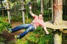 Record year for Hampshire attraction Go Ape