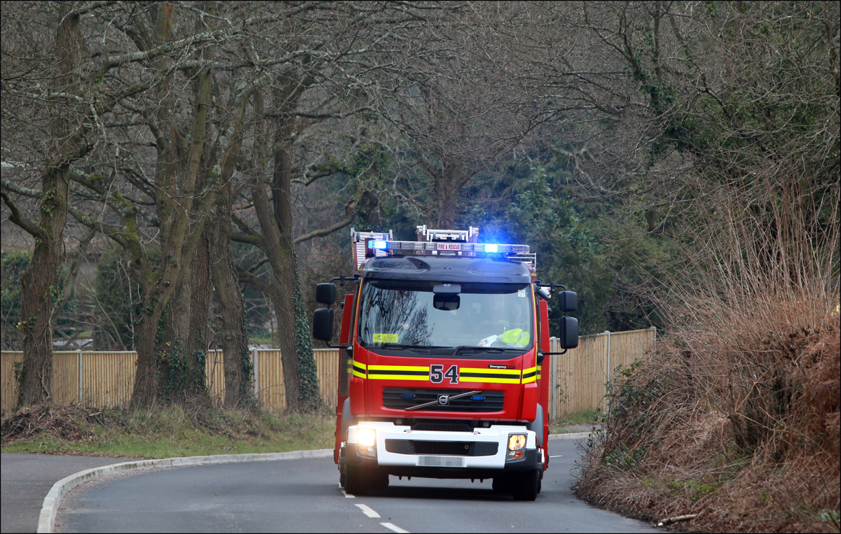 Firefighters rescued four people from a crashed car on the A31 in the New Forest