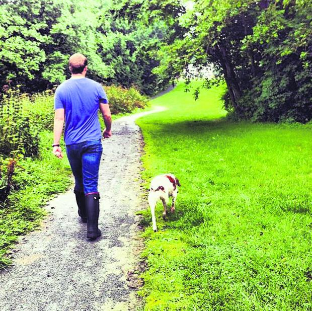 Two-thirds of dog owners in the south east have struck up a new friendship on their 'walkies', according to a survey