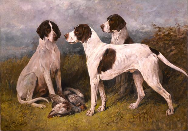 New Forest painter's work goes under hammer