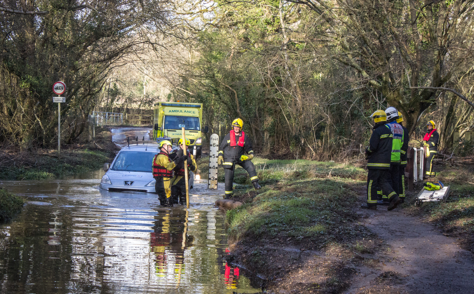 Motorist rescued from ford near Plaiford