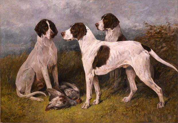 Daily Echo: The John Emms painting Ruby and Companion