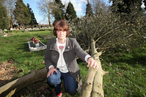Marion Lacey with one of the fallen trees at South Stoneham Cemetery.