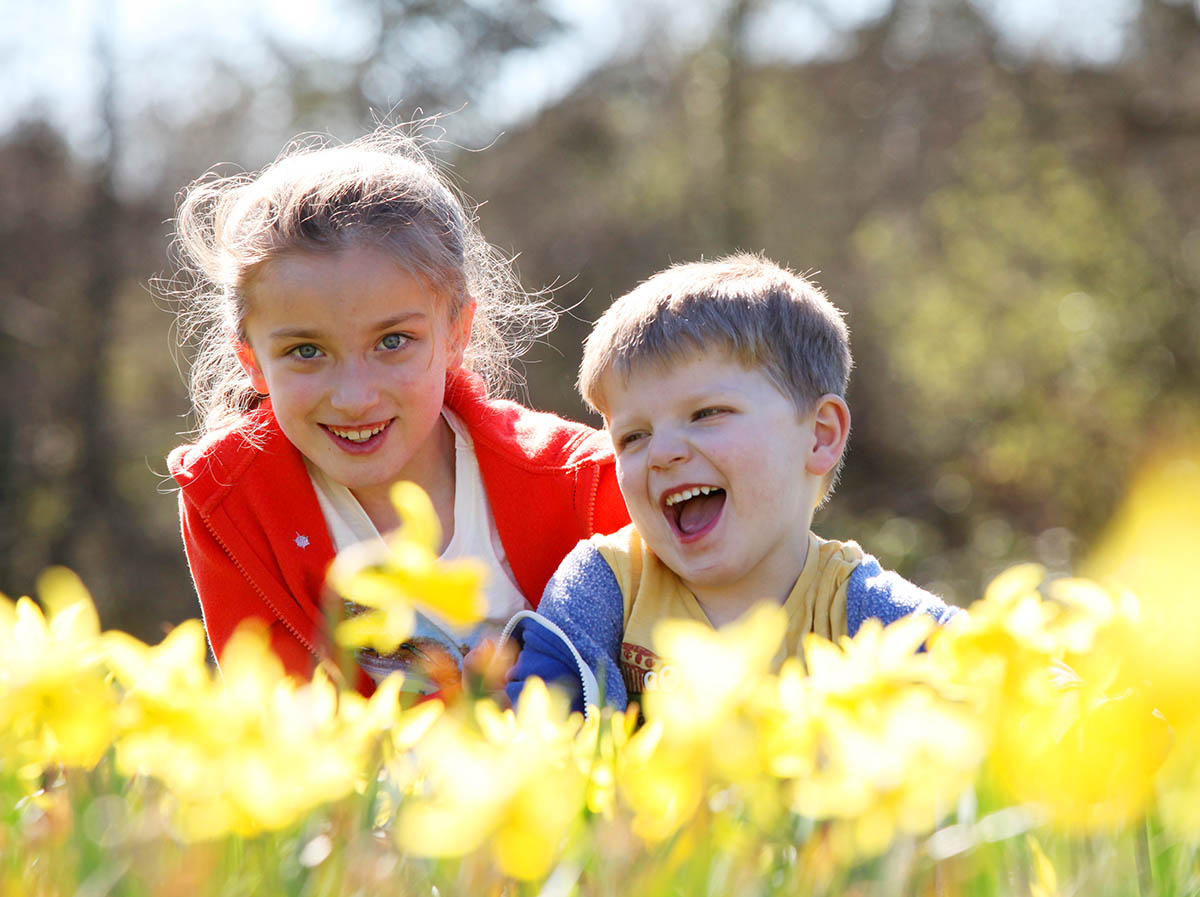 Holly Francis, six, and brother Ben, four, enjoy the sun among the daffodils in  Eastleigh