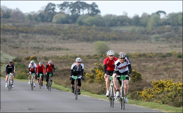 Wiggle cyclists in the New Forest at the weekend.