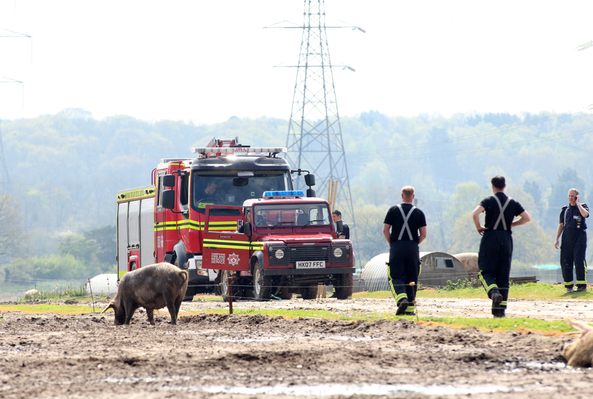 Hampshire firefighters join police and engineers from Esso and Government agencies at a pig farm in Wellow, near Romsey.