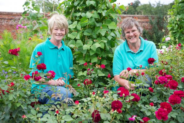 Winchester gardening duo are still going strong on TV
