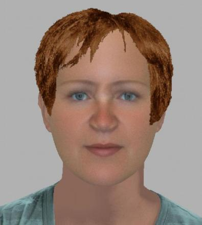An efit image of the suspect