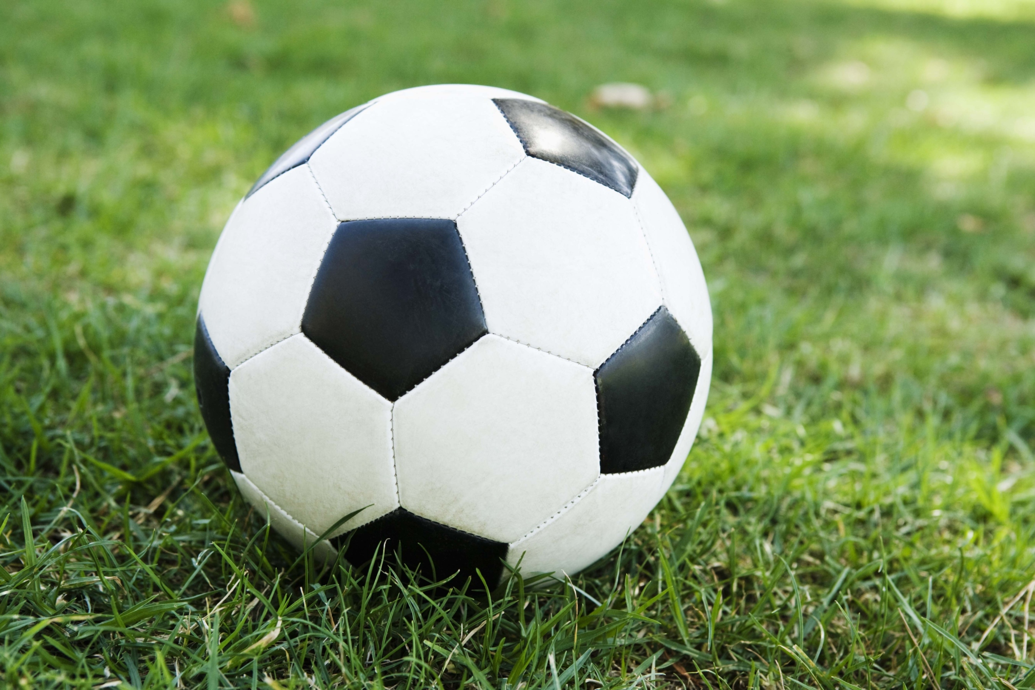 Local football league forced to fold